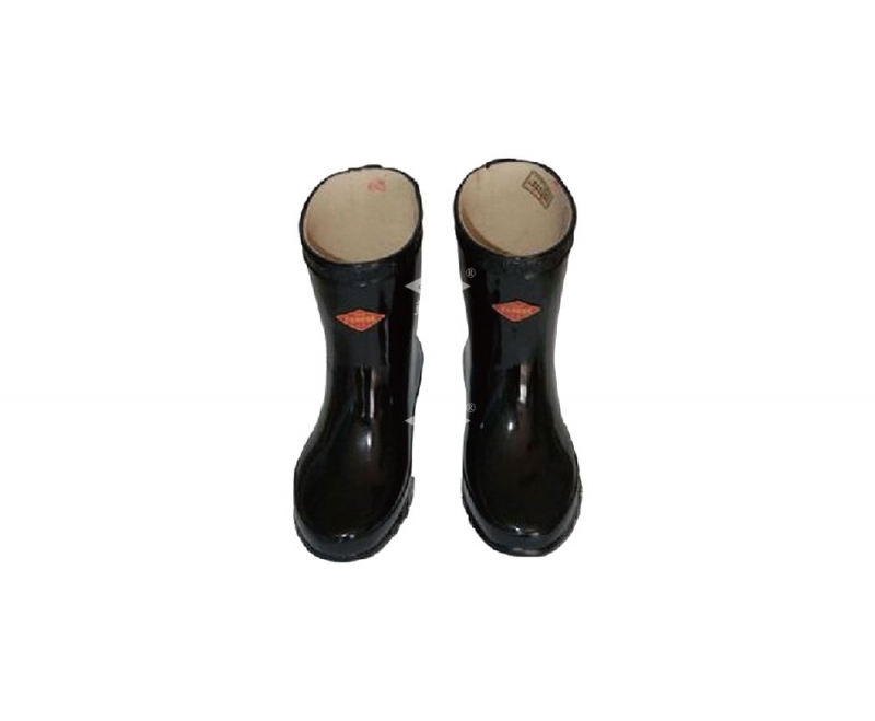 Electrically Insulated Boots